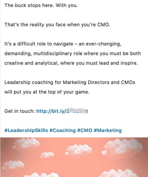 Company type: CMO Coaching