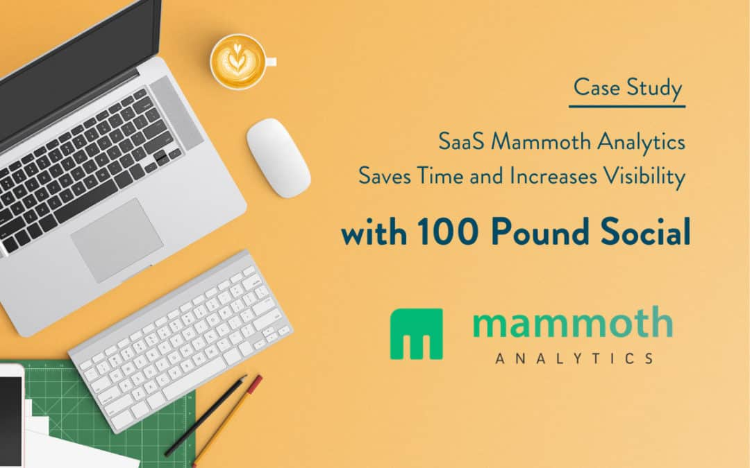 SaaS Mammoth Analytics Saves Time and Increases Visibility with B2B LinkedIn Lead Generation