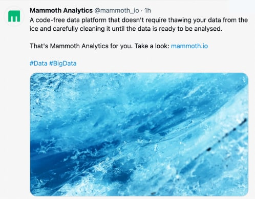 Mammoth analytics - Twitter Post - 100 Pound Social